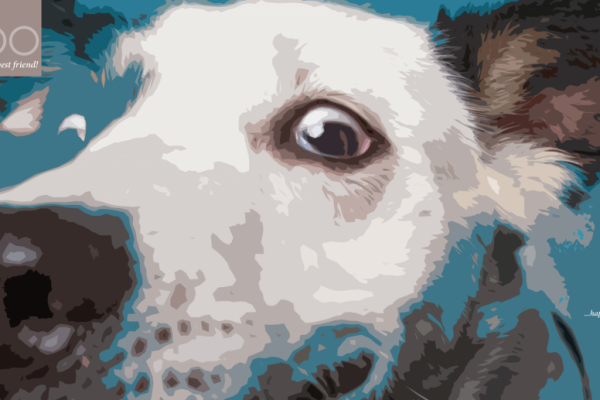 Graphic Print of Dog