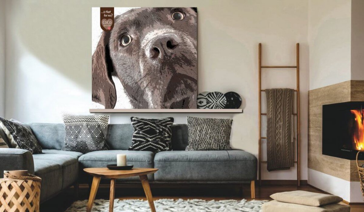 Chocolate Labrador CoCo Lounge