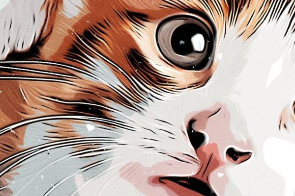 Graphic Kitten Print