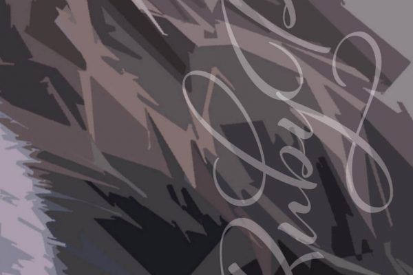 Graphic Detail on Personalised Spaniel Print